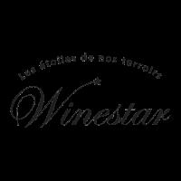Winestar logo square
